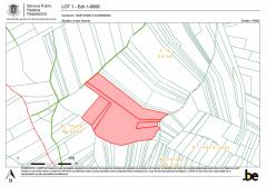 VENTE PUBLIQUE DE PARCELLES BOISEES - Commune de BASTOGNE (Division Wardin)