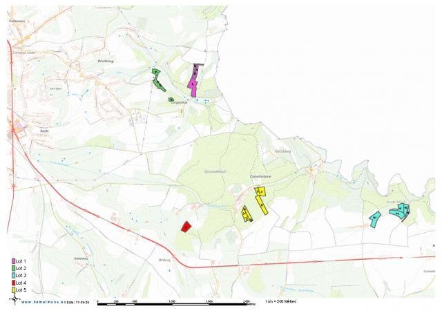 15,75 ha en 5 lots à vendre à Autelbas (Arlon)